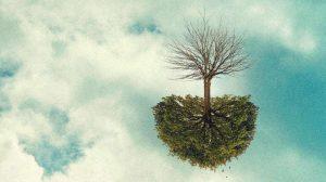 arbre-invertit